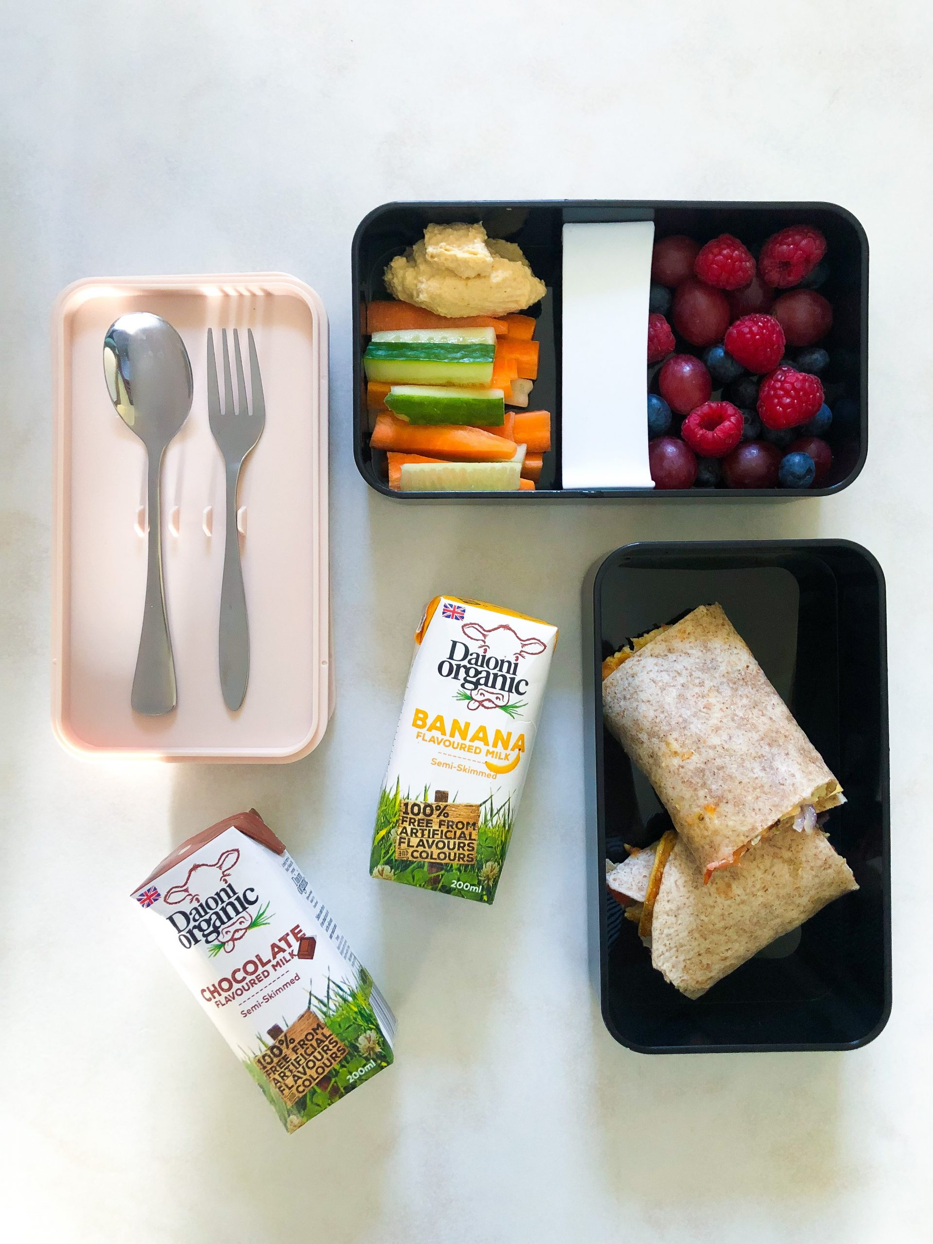 Daioni Organic Tortilla Wrap